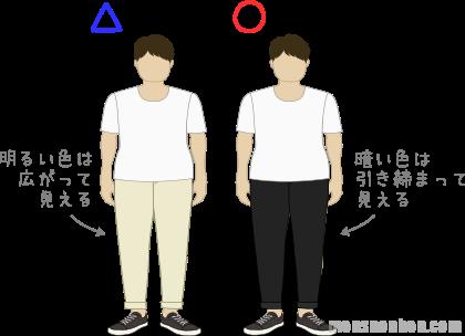 がっちり体型(膨張色・収縮色)